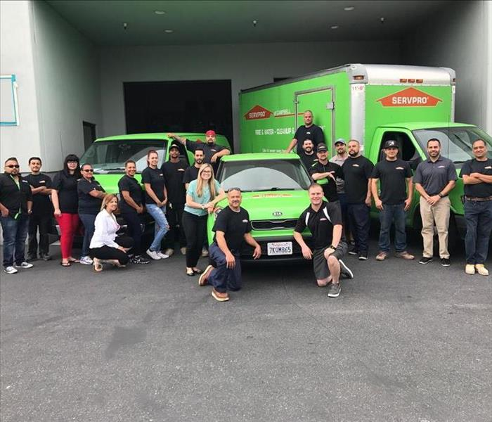 Employees standing around 3 green SERVPRO vehicles