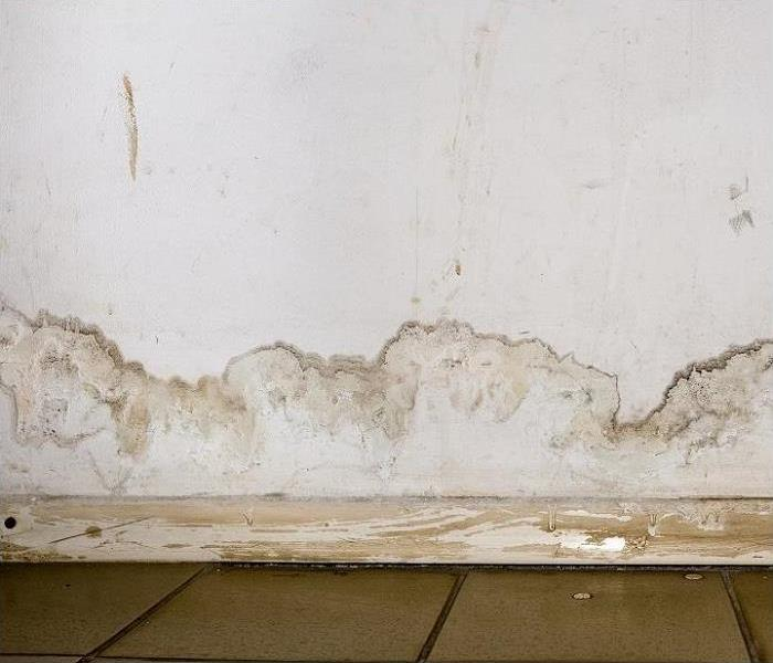 Water stains on baseboard and wall