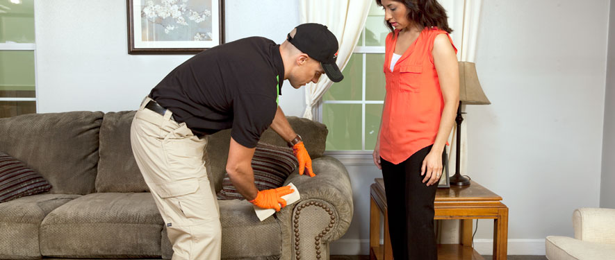 Campbell, CA carpet upholstery cleaning