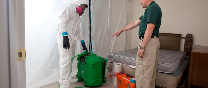 San Jose, CA mold removal process